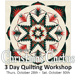 3 Day Quilting Workshop w/Cat - Judy Niemeyer NEW Christmas Cactus