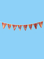 Summer Celebrations Banner