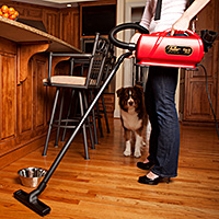 Effortlessly Cleans Bare Floors and Area Rugs