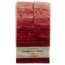 Stonehenge Gradations Brights Hibiscus - 2.5 inch wide Strips 40 Pieces